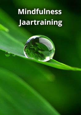 Mindfulness Jaartraining