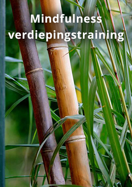 Mindfulness Verdiepingstraining